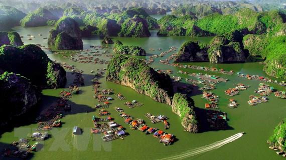 [Mega Story] Bảo tồn và phát triển bền vững biển Việt Nam