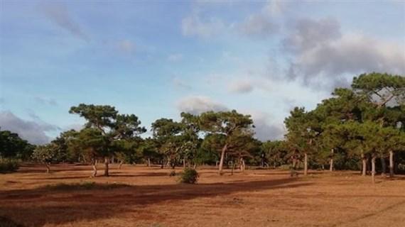 Chấm dứt hoạt động Dự án đầu tư sân golf và khu nghỉ dưỡng Đà Lạt