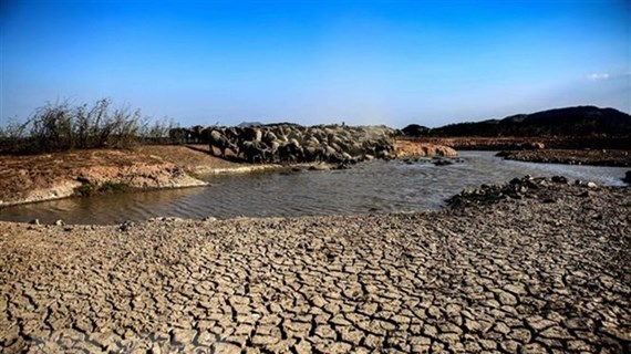 Ngày chống sa mạc hóa, hạn hán: Thúc đẩy chống biến đổi khí hậu