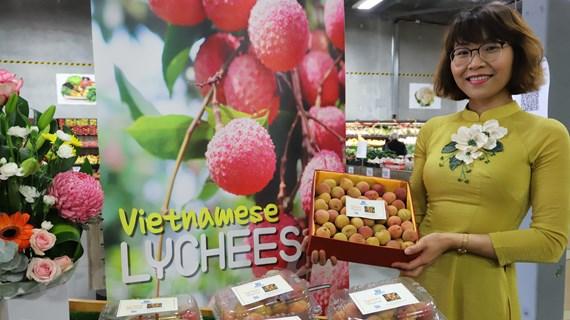 Vải tươi Việt được đấu giá lên tới 53 triệu đồng một kg ở Australia