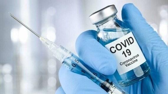 Bộ Y tế: Các vaccine được cấp phép khẩn cấp phải trải qua 3 giai đoạn