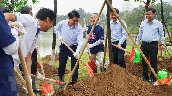Hà Nội trồng thêm 1.000 cây hoa anh đào tại Công viên Hòa Bình