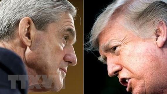 Ông Trump giảm mức độ tín nhiệm sau báo cáo của Công tố viên đặc biệt