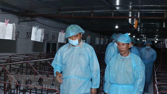Cần huy động cả hệ thống chính trị vào cuộc chống dịch tả lợn