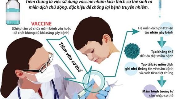 Tiêm chủng vắcxin để chủ động chống lại các bệnh truyền nhiễm