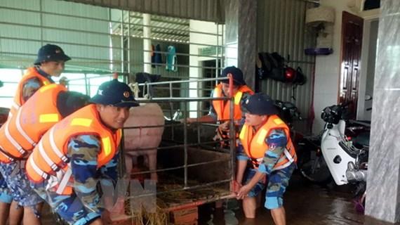 Thư, điện thăm hỏi của Campuchia, Mông Cổ, Hàn Quốc về lụt miền Trung