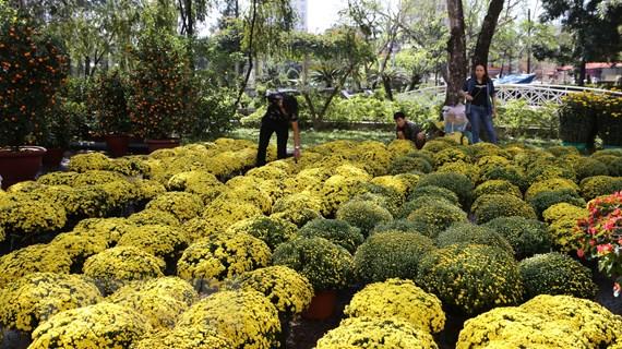 Hình ảnh chợ hoa xứ Huế rực rõ sắc màu những ngày giáp Tết