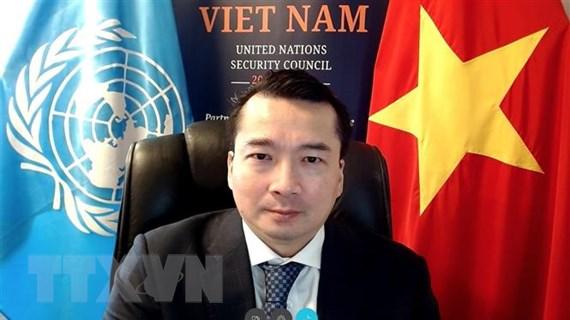 Việt Nam chủ trì cuộc họp trực tuyến của HĐBA về tình hình Libya