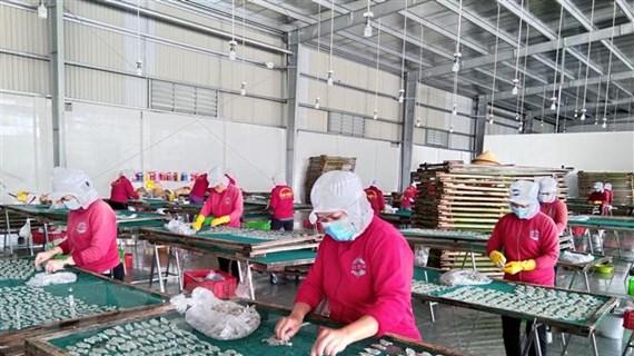 Giải quyết tình trạng thiếu lao động giúp doanh nghiệp đón đà phục hồi