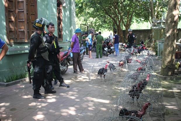 Hoa Binh: Bat giu 66 doi tuong to chuc da ga an tien quy mo lon hinh anh 1