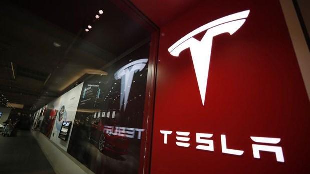 Tap doan Tesla doi mat voi khung hoang nhan su cap cao hinh anh 1
