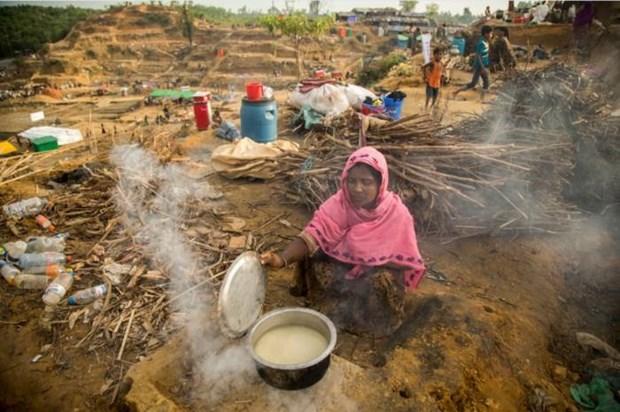 LHQ lo ngai ve tinh hinh nguoi ti nan Rohingya o Bangladesh hinh anh 1