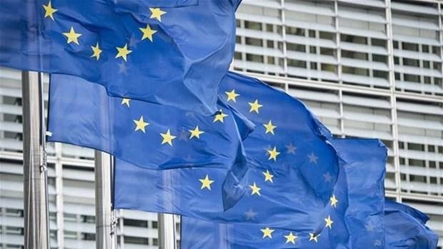 EU dua Thuy Si, UAE ra khoi danh sach cac thien duong tron thue hinh anh 1