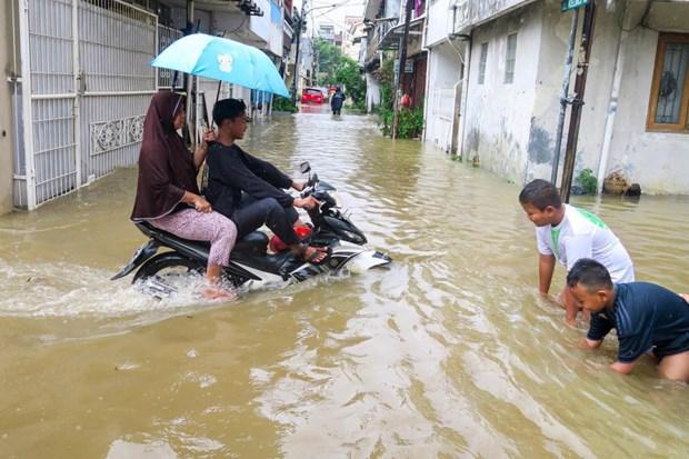 Indonesia chi hang trieu USD de no luc giam nguy co lut loi hinh anh 1