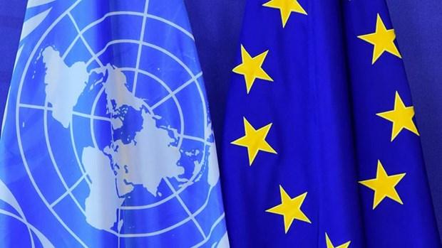 Viet Nam va Indonesia danh gia cao vai tro tien phong cua EU hinh anh 1