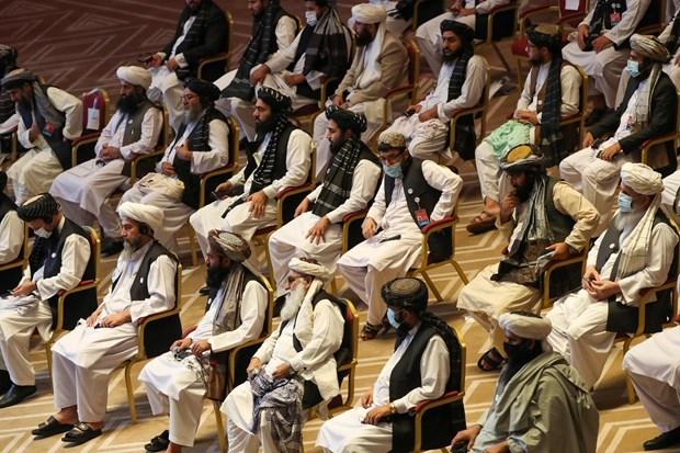 Chinh phu Afghanistan va Taliban noi lai hoa dam tai Qatar hinh anh 1