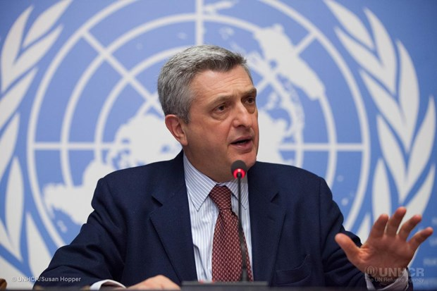 WHO, United Nations welcome the new policy of the General Department of Information picture 2
