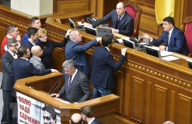 Ukraine: Lien minh cai cach tro thanh da so trong quoc hoi hinh anh 1