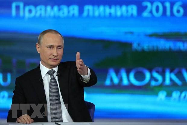 Tong thong Putin tra loi truc tuyen: 80 cau hoi hoc bua duoc giai dap hinh anh 1