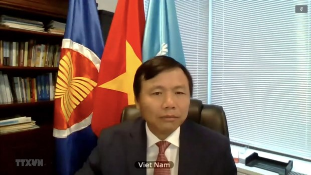 Viet Nam keu goi thuc day doi thoai hoa binh, khoi phuc on dinh o Mali hinh anh 2