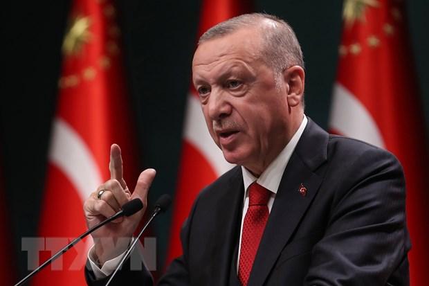 Tong thong Tho Nhi Ky Erdogan muon cai thien quan he hop tac voi My hinh anh 1
