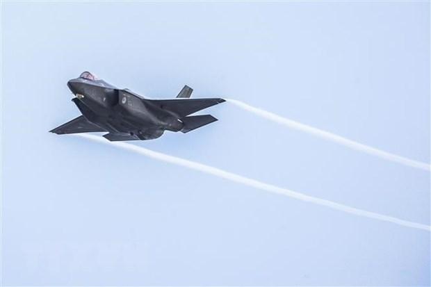Tho Nhi Ky ha thap kha nang quay lai chuong trinh may bay F-35 hinh anh 1