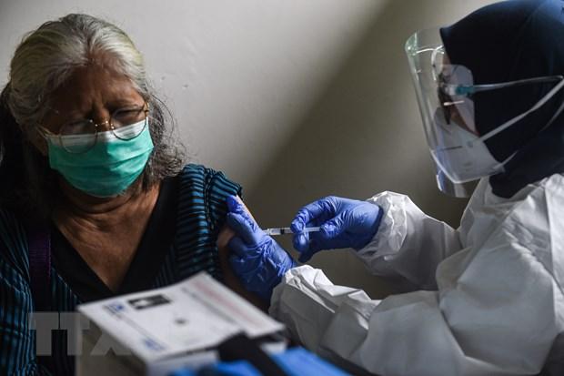 Dich COVID-19: Indonesia cap phep su dung khan cap vaccine AstraZeneca hinh anh 1