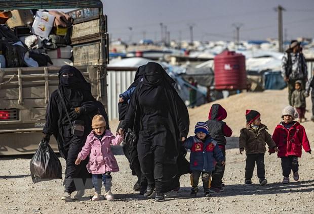 Viet Nam de cao vai tro trung tam cua giai phap chinh tri cho Syria hinh anh 1
