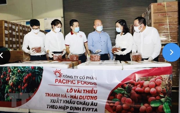 Vai thieu chinh phuc thi truong EU, mo rong thuong hieu nong san Viet hinh anh 1