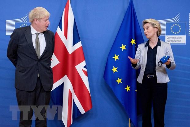Anh keu goi EU giai quyet van de thuong mai Bac Ireland hau Brexit hinh anh 1