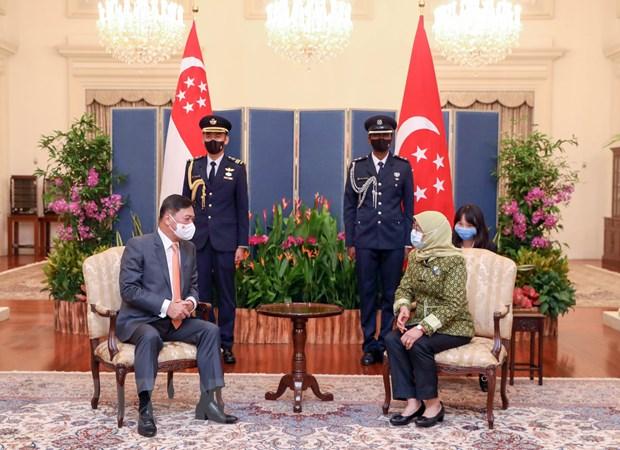 Singapore va Viet Nam tang cuong quan he hop tac, mo rong dau tu hinh anh 1