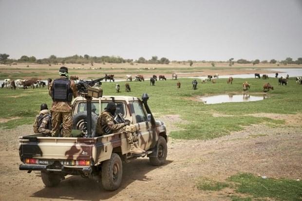 3 cong dan Trung Quoc va 2 nguoi Mauritania bi bat coc o Tay Nam Mali hinh anh 1
