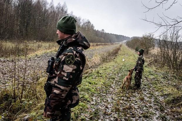 Frontex trien khai linh bien phong giam sat bien gioi Litva-Belarus hinh anh 1