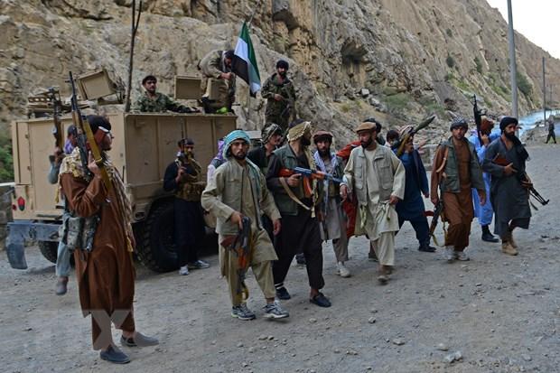 Afghanistan: NRF to cao Taliban dang thanh loc sac toc o tinh Panjshir hinh anh 1
