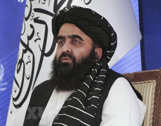 Taliban de nghi duoc phat bieu, bo nhiem Dai su tai Lien hop quoc hinh anh 1