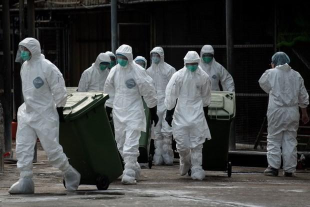 Trung Quoc phat hien them 8 ca nhiem virus H7N9 hinh anh 1