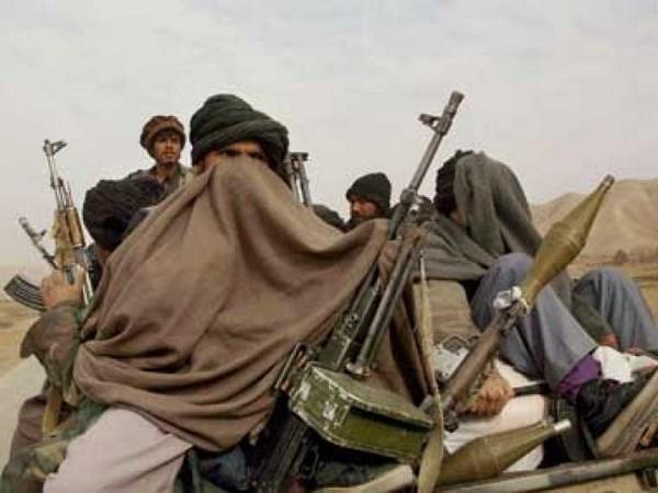Pakistan lap uy ban hoa dam voi phien quan TTP hinh anh 1