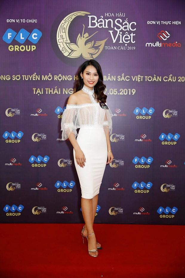Hoa hau Ban sac Viet 2019: Xuat hien 'ban sao' Hoa hau Thu Ngan hinh anh 2