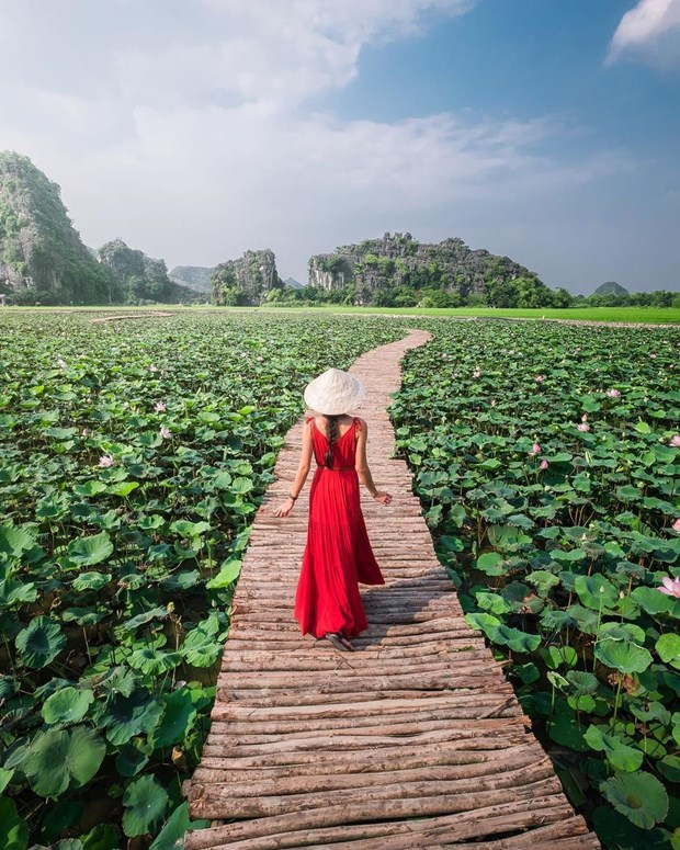 Nhung diem du Xuan khong nen bo lo khi du lich Ninh Binh hinh anh 2