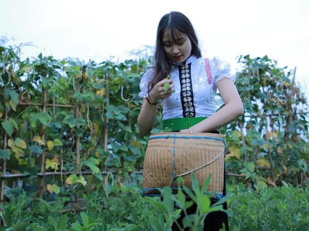 Lan toa ban sac van hoa nguoi Thai bang du lich cong dong hinh anh 4