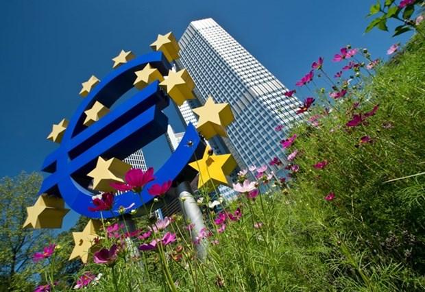 Mung va lo sau khi Eurozone don nhan thanh vien thu 18 hinh anh 1