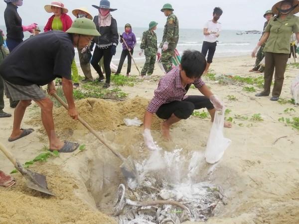Toan van nghi quyet phien hop Chinh phu thuong ky thang Tu hinh anh 2