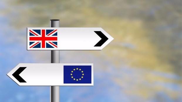 Thu tuong Theresa May: Anh can hiep dinh chuyen tiep truoc khi roi EU hinh anh 1