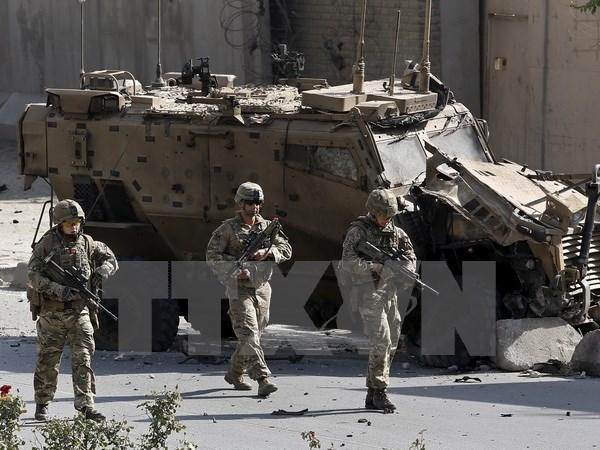 NATO khang dinh se khong truc tiep tham gia cuoc chien chong IS hinh anh 1