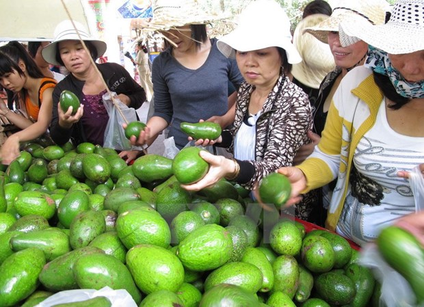 Tung bung khai mac Le hoi Trai cay Nam Bo tai TP Ho Chi Minh hinh anh 1
