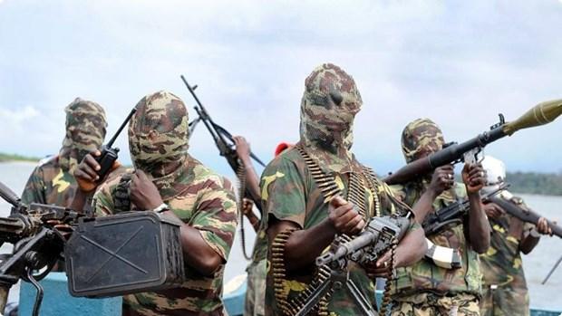 Nigeria bat giu hai doi tuong bi tinh nghi la chi huy Boko Haram hinh anh 1
