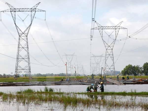 Go vuong ve giai phong mat bang cong trinh duong day 500 kV hinh anh 1