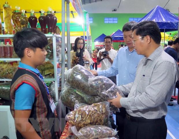 Phien cho Sam Ngoc Linh lan dau tien duoc to chuc tai Quang Nam hinh anh 1