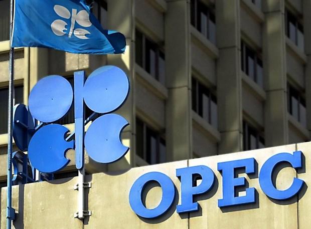 To chuc OPEC co kha nang that chat