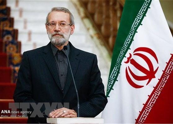 Chu tich Quoc hoi Iran Ali Ardeshir Larijani tham chinh thuc Viet Nam hinh anh 1